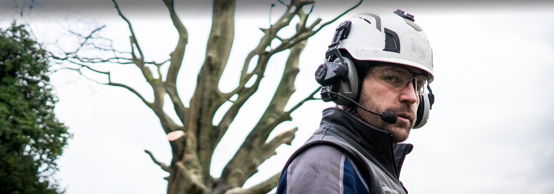 Rhys-Dobbs-Tree-Services-62